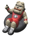 UGA HAIRY DOG